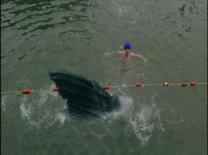 Dinoshark's fin passes a swimmer